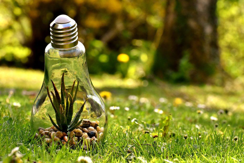 lampe environnementale
